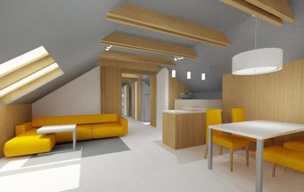Podkrovní apartmán | Olešná